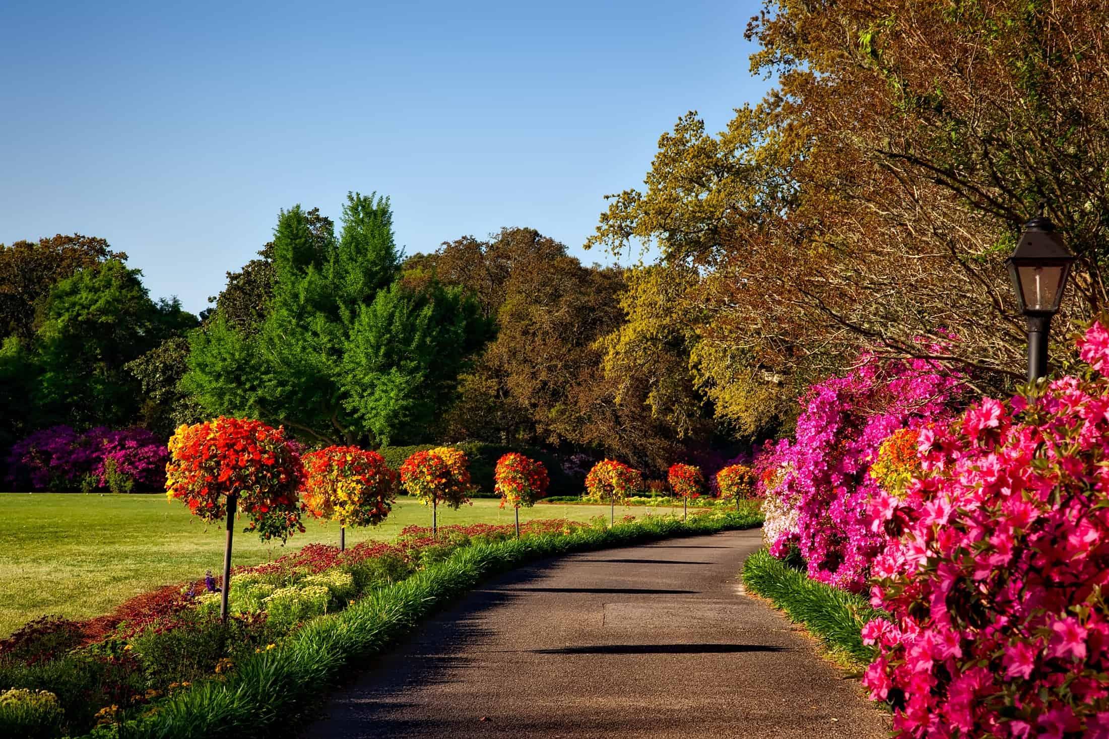 Custom LawnCare and Landscape Services